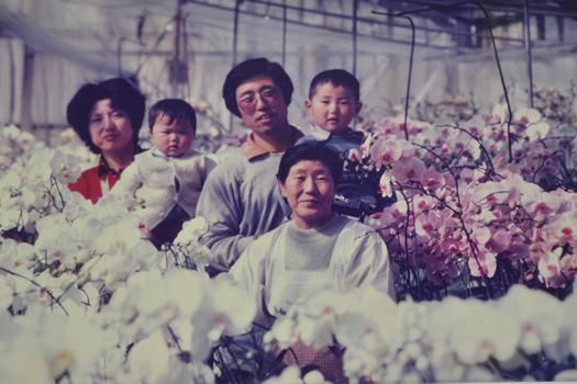 森田洋蘭園の歴史