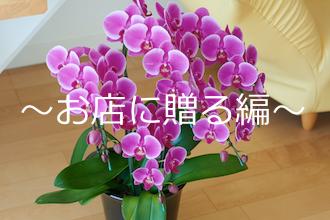 喜ばれる洋蘭の贈り方〜お店に贈る編〜