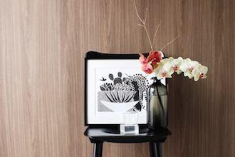 胡蝶蘭の切り花を長くたのしむ管理法